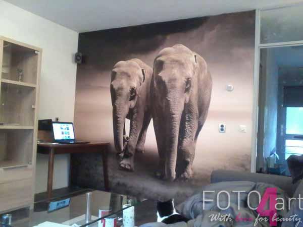 Fotobehang Paar van olifanten in beweging